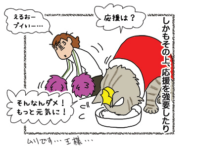 13082018_cat2.jpg