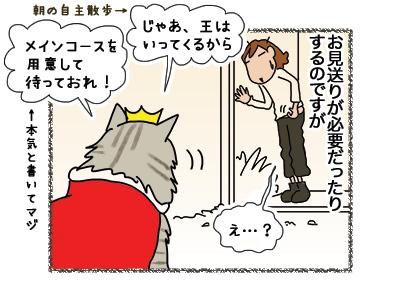 13082018_cat3.jpg