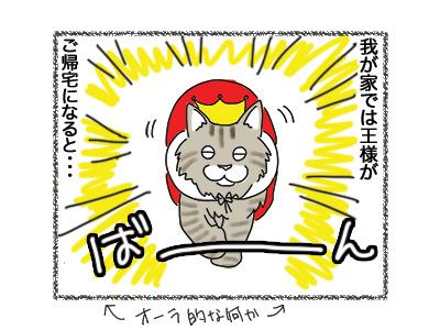 18072018_cat1.jpg