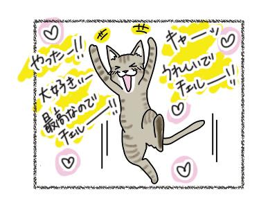 18072018_cat3.jpg