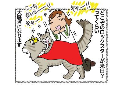 18072018_cat4.jpg