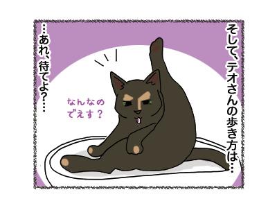19072018_cat3.jpg