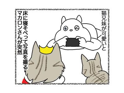 20092018_cat1.jpg