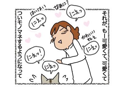 21082018_cat2.jpg