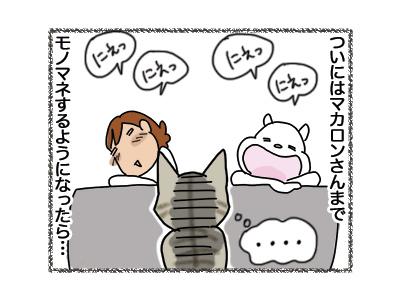 21082018_cat3.jpg