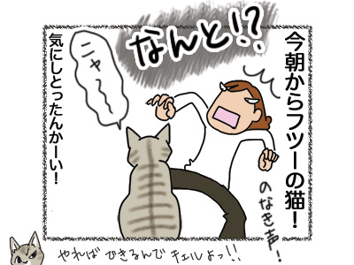 21082018_cat4.jpg