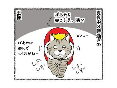 21092018_cat1.jpg
