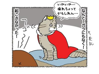 21092018_cat3.jpg