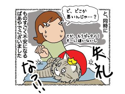21092018_cat6.jpg