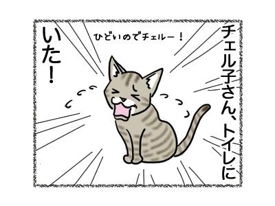 22082018_cat1.jpg