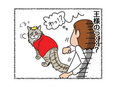 23082018_cat3.jpg