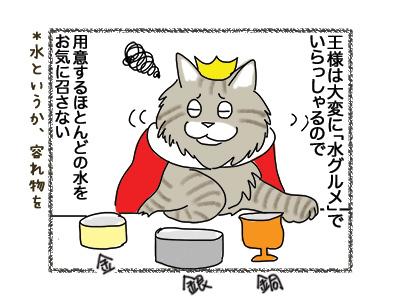 24072018_cat1.jpg