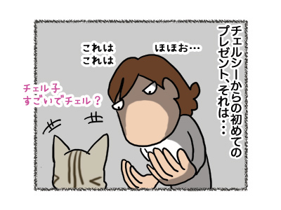 24082018_cat3.jpg