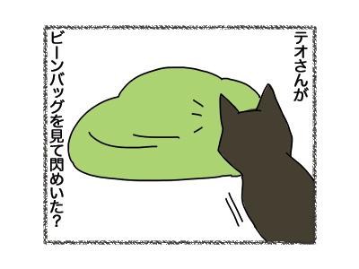 25092018_cat1.jpg