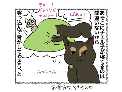 25092018_cat2.jpg