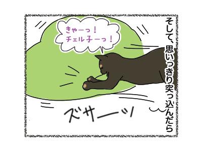 25092018_cat3.jpg