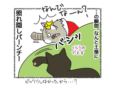 25092018_cat5.jpg