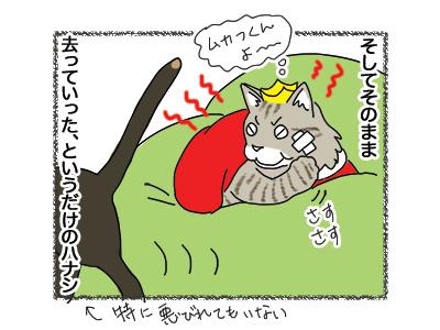 25092018_cat6.jpg