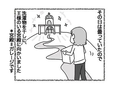 26072018_cat1.jpg