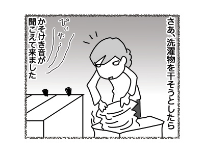 26072018_cat2.jpg