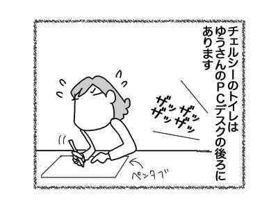 27072018_cat1.jpg
