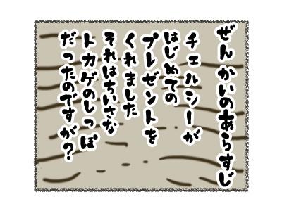 27082018_cat1.jpg