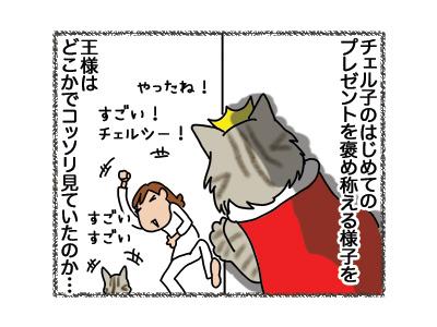 27082018_cat2.jpg