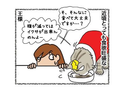 27092018_cat1.jpg