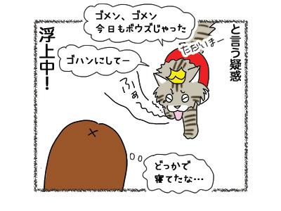 27092018_cat5.jpg