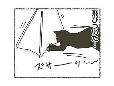 30072018_cat3.jpg