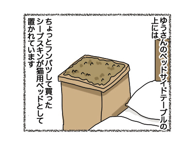 31072018_cat1.jpg