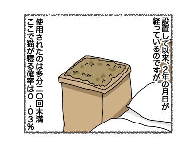 31072018_cat2.jpg