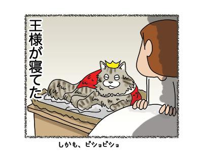 31072018_cat4.jpg