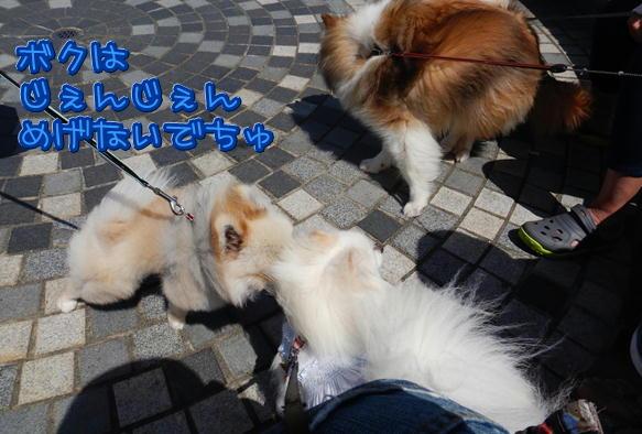 1_25_20180610202743ecf.jpg