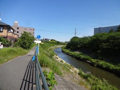 walk201805200045.jpg