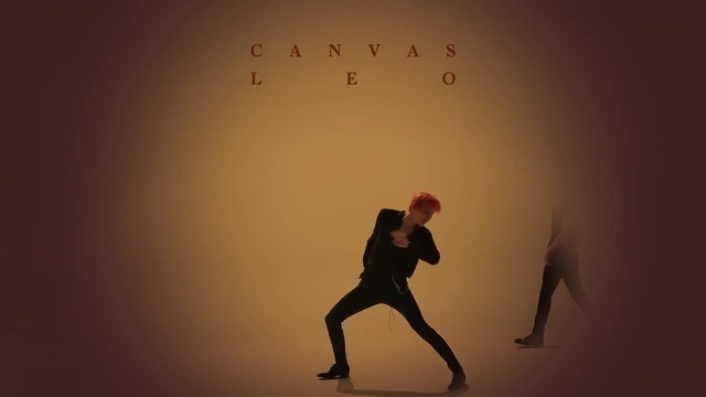 180727 LEO CANVAS Performance Preview 071