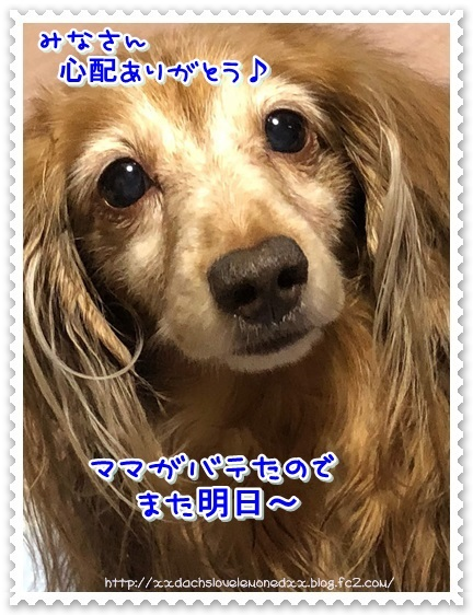 001-20180518-222013.jpg