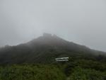 太平山 旭又コース裏の鳥居と垣間見える頂上
