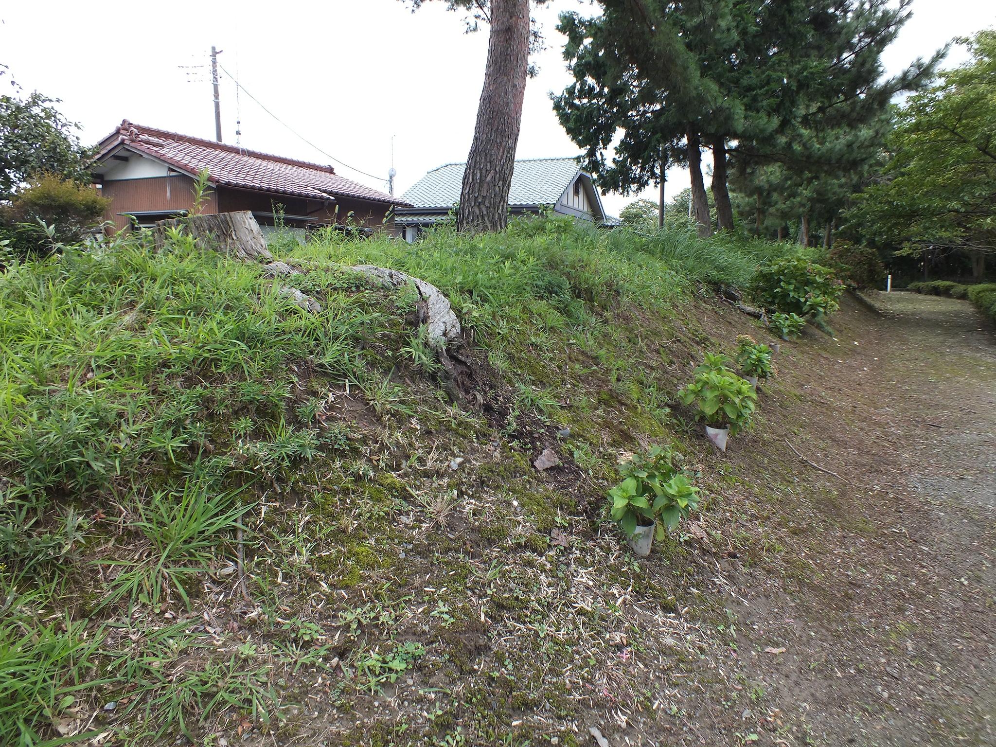 城館の遺構でないが、成田氏の築いた堤