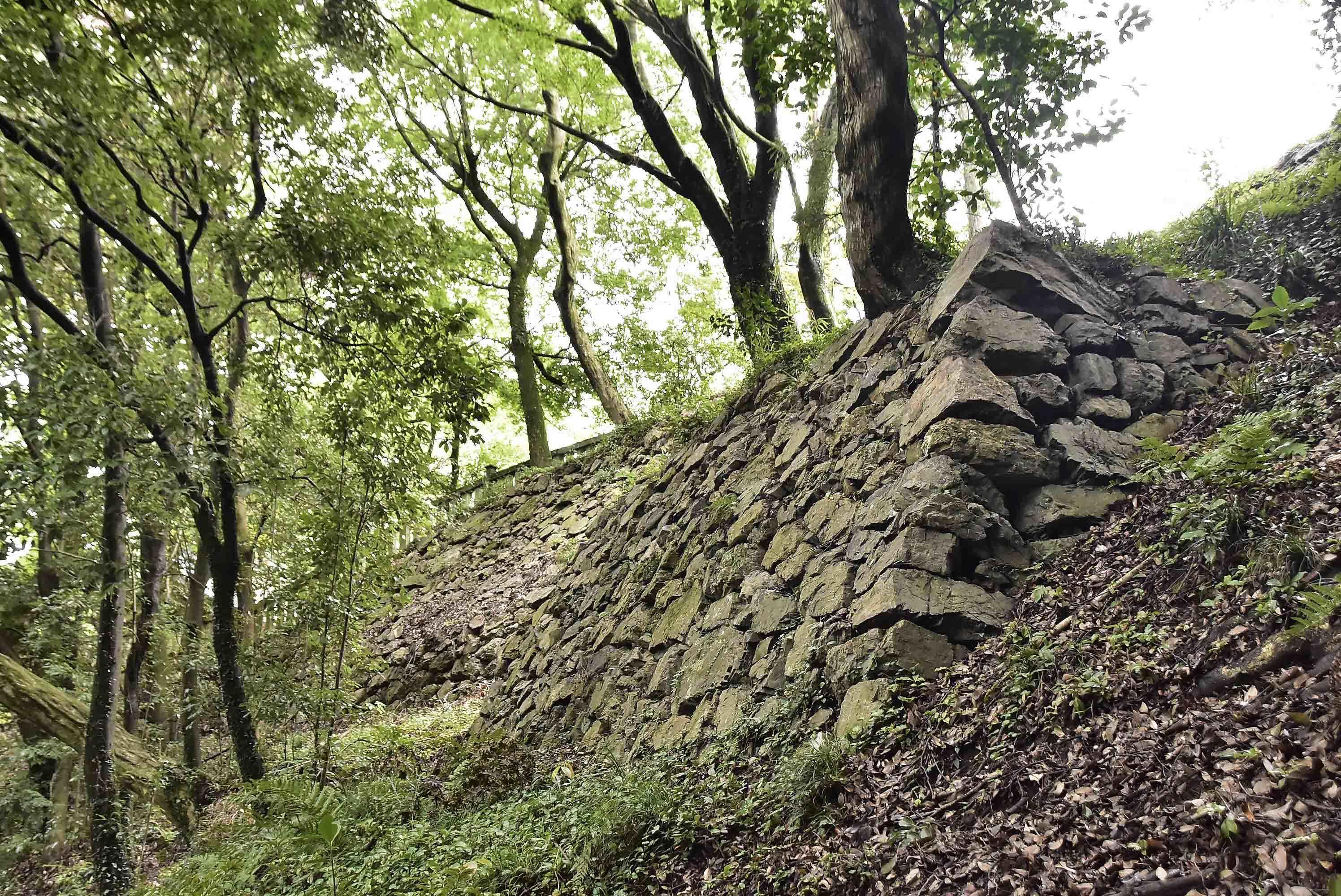 本丸 東側の石垣