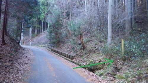 登山口のある林道(坂本城)