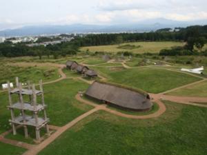 三内丸山遺跡航空写真