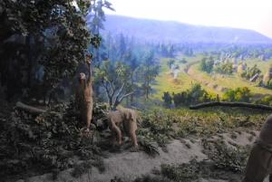 石器時代木の実収穫