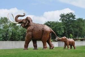 4 ナウマン象