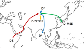 21 D系の移動経路