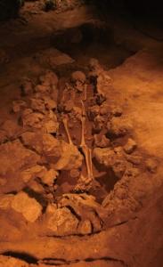 35 港川遺跡の遺骨