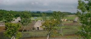 43 上野原遺跡