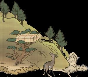 7 志賀海神社の鹿