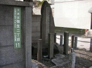 20 弥生町遺跡