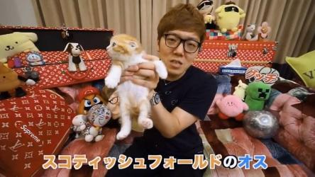独身男性が保護猫を飼うための条件きつすぎる件
